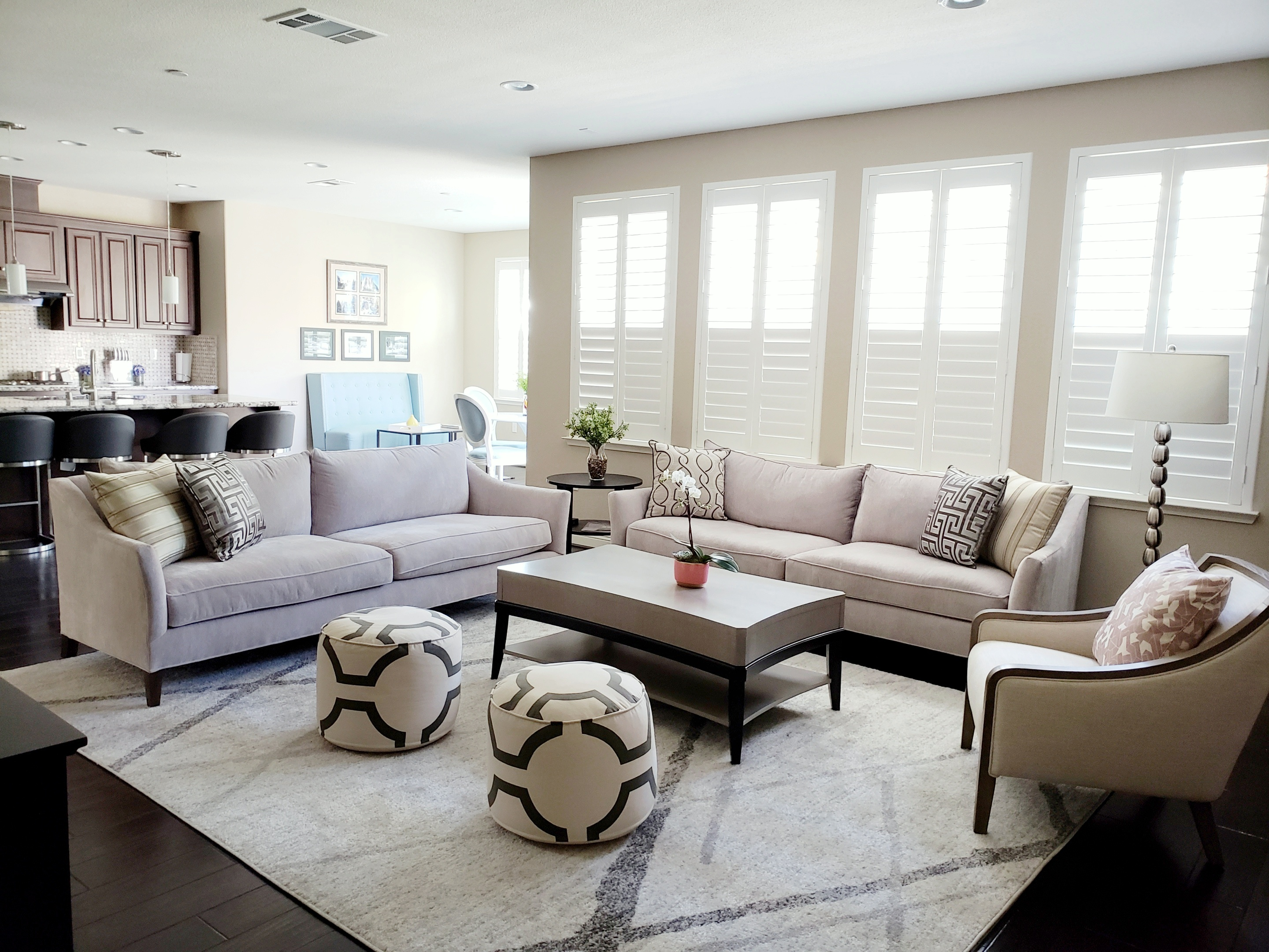 Dublin California Transitional Style Final Reveal Part 2