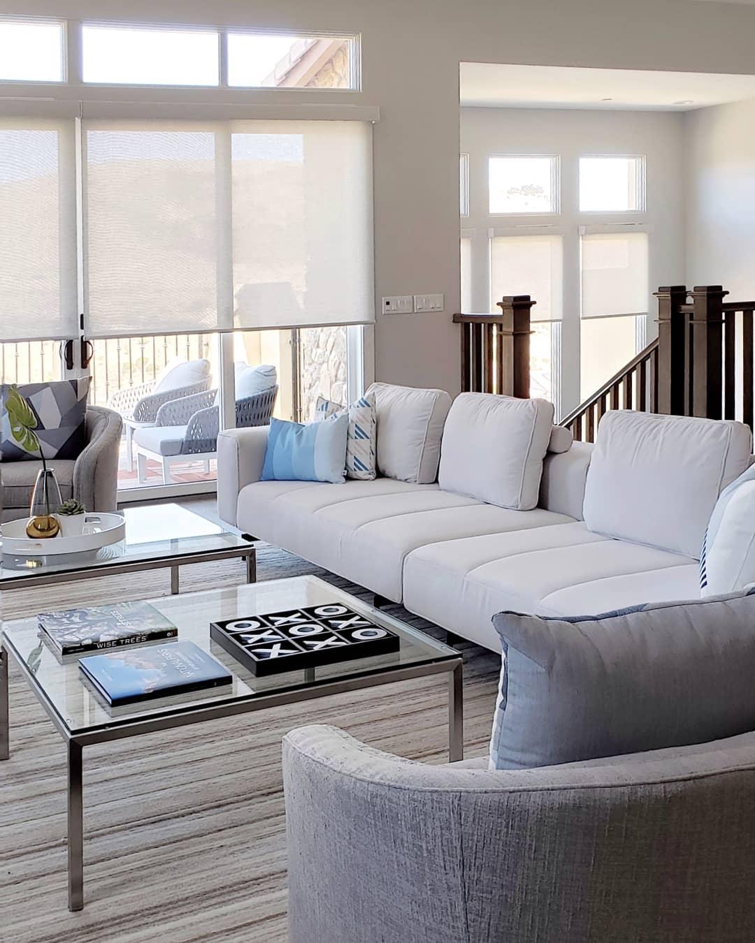 SF Bay Area Interior Designer & Decorator. Modern Living Room.